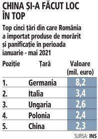 Grafic: Top cinci ţări din care România a importat produse de morărit şi panificaţie în perioada ianuarie - mai 2021