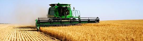 ZF Corporate: statistici agricultură