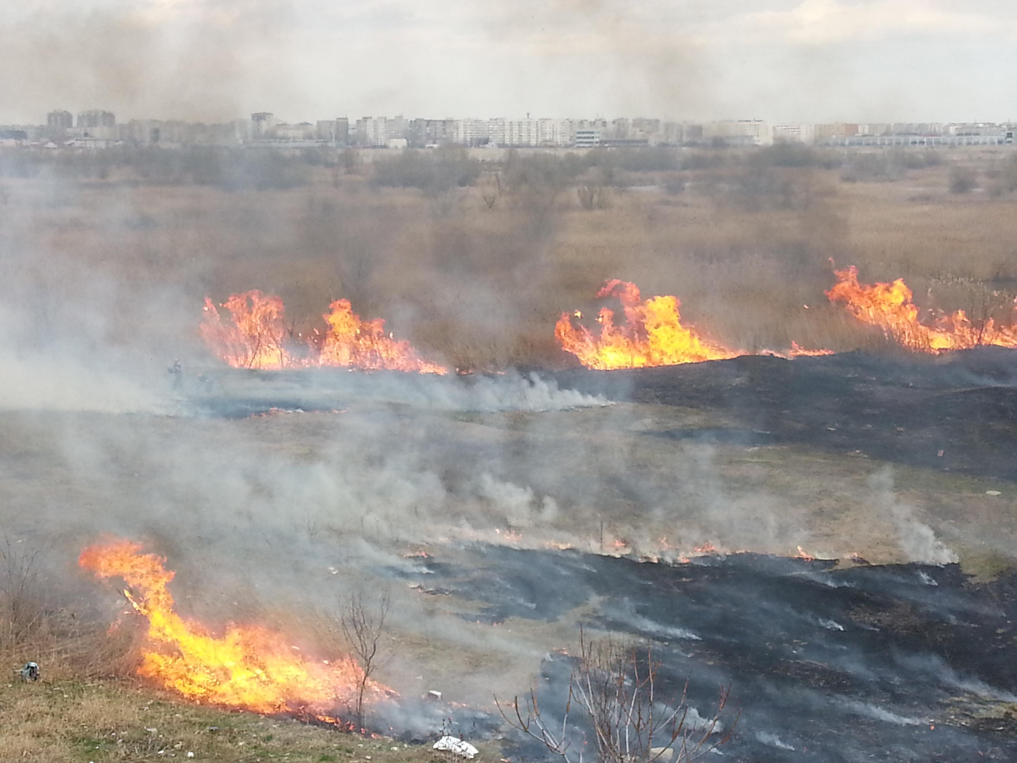 Bilanţul incendiilor de vegetaţie din California a ajuns la cel puţin 25 de morţi