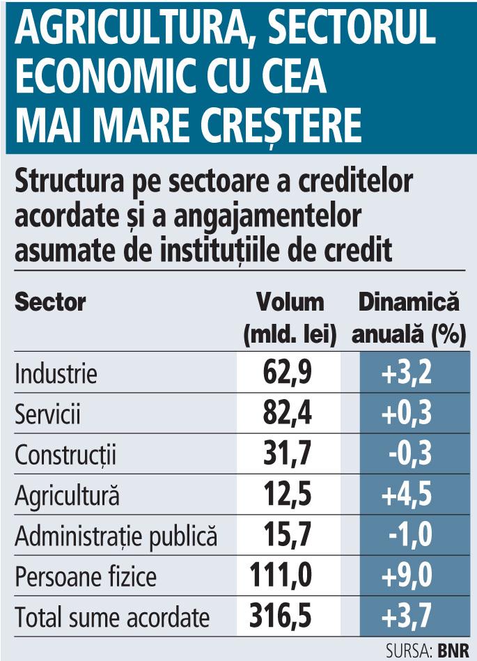 Agricultura şi industria au fost în august cele mai creditate sectoare