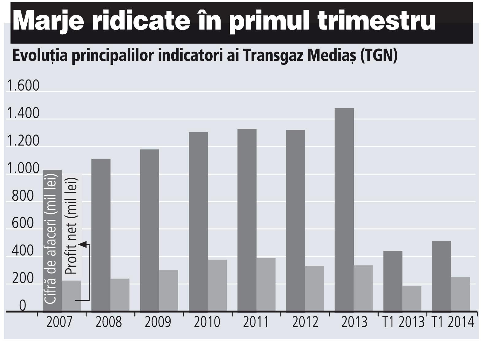 Evoluţia principalilor indicatori ai Transgaz Mediaş (2008-2013)