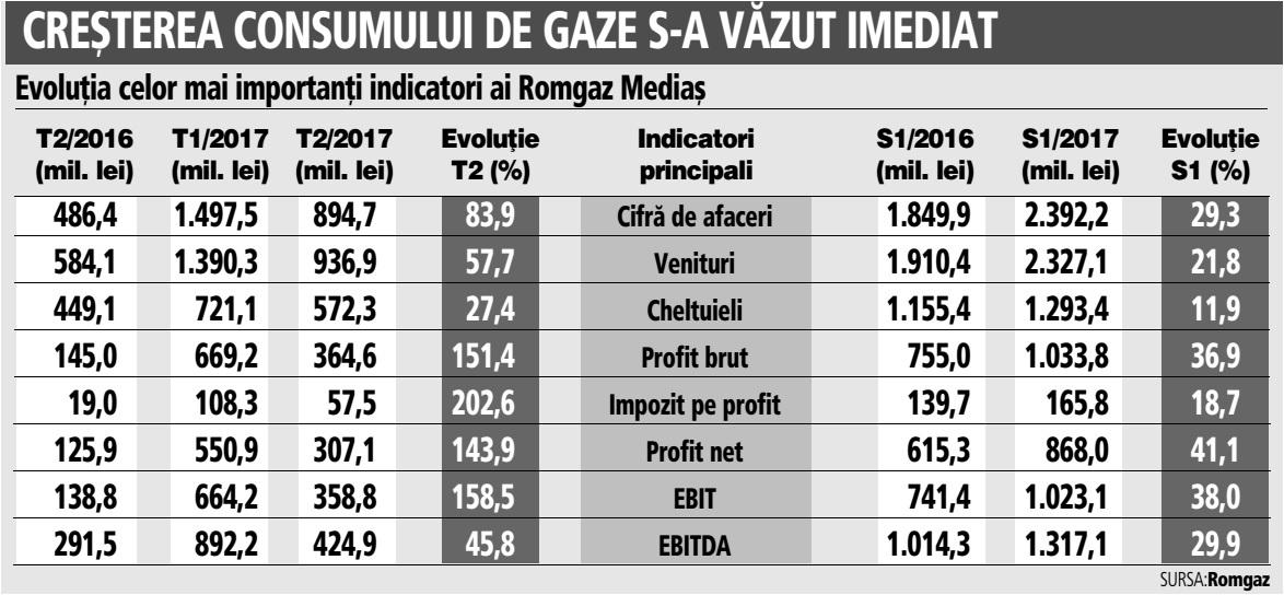 Romgaz Mediaş ajunge la cea mai mare rată a profitului net din istoria companiei după o creştere de peste 40% în S1