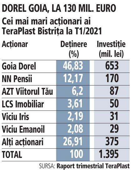 Grafic: Cei mai mari acţionari ai TeraPlast Bistriţa la T1/2021