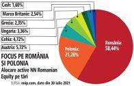 Grafic: Alocare active NN Romanian Equity pe ţări