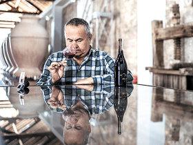 Virgil Mândru, proprietarul Tohani, se asociază cu doi antreprenori pentru a crea un nou proiect de vinuri premium