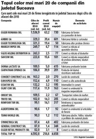Grafic: Topul celor mai mari 20 de companii din judeţul Suceava