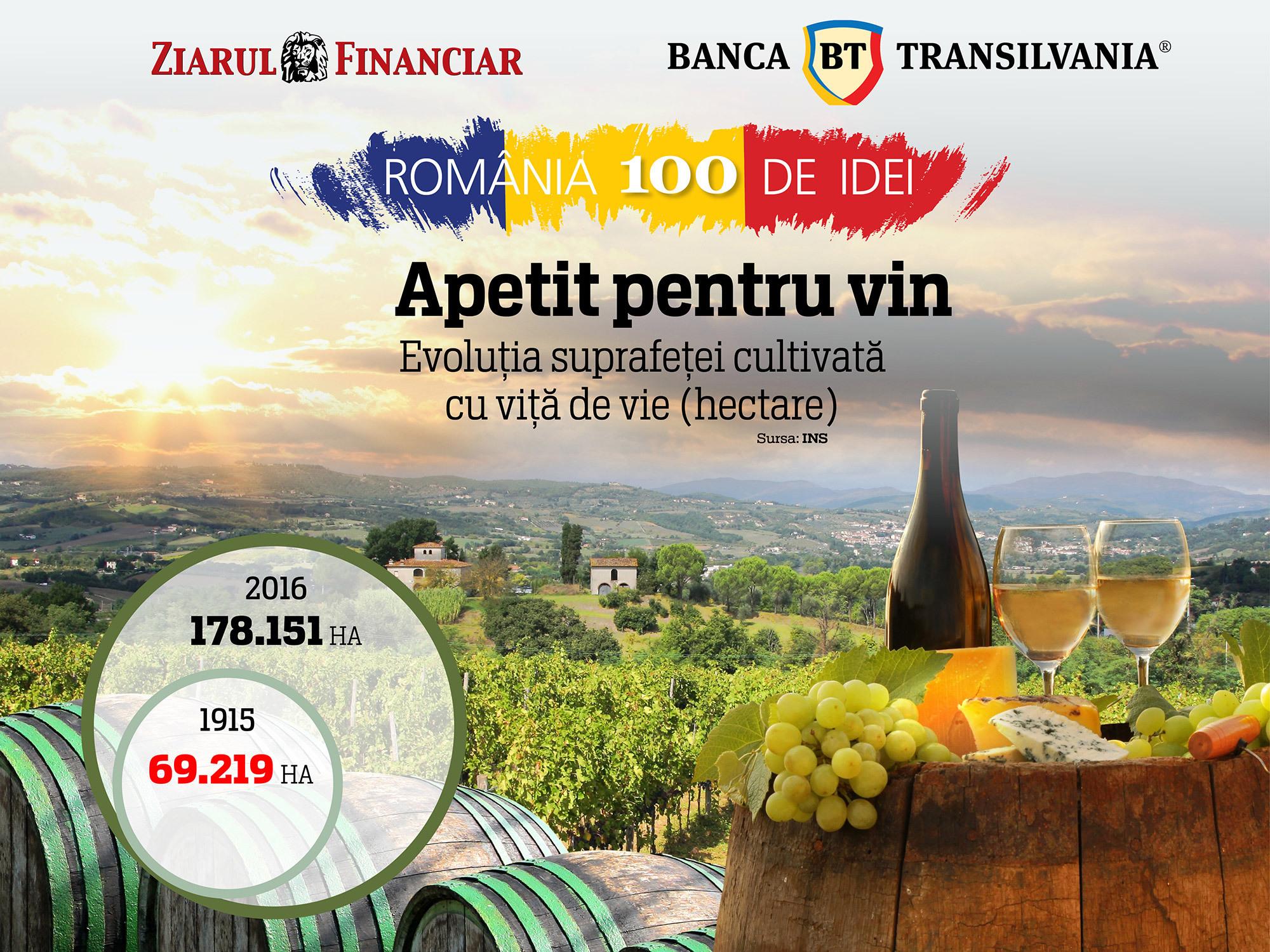 Un secol într-un pahar: suprafaţa cultivată cu viţă-de-vie a crescut de 2,5 ori în ultimii 100 de ani. România, în top 10 european la producţia de vin