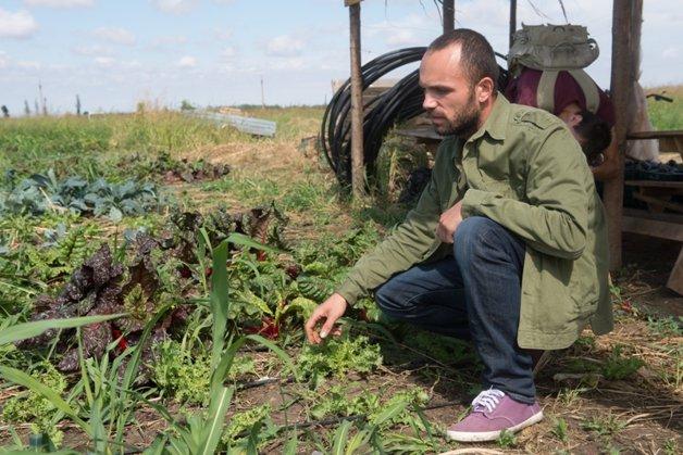 Cum arată o fermă BIO. Drumul legumelor cu gust care ajung la uşa românilor dispuşi să plătească şi până la de trei ori mai mult