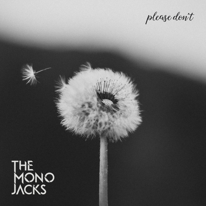 "The Mono Jacks lansează un nou single – ""Please Don`t"""