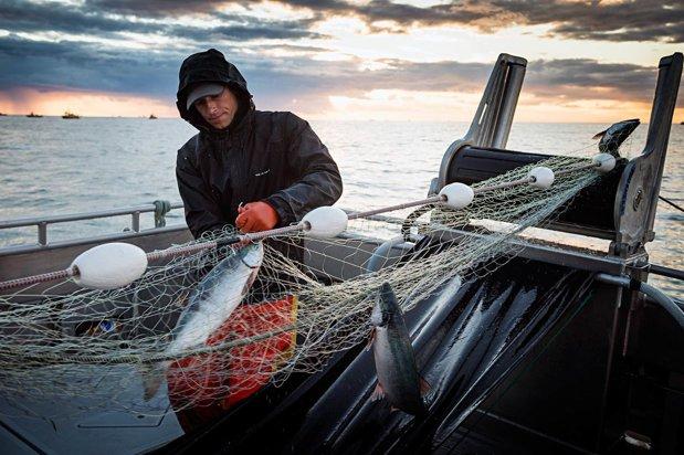 Doi pescari din Irlanda de Nord au prins ceva neaşteptat în plasă: Este vechi de aproape 10.500 de ani şi intact