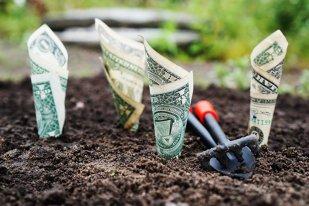 cum puteți face bani cu afacerea dvs. site web pentru a câștiga bani pe internet capitalof