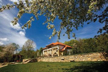 Povestea familiei care a lăsat viaţa din Bucureştiul agitat pe o viaţă la un conac în vârf de munte înconjurat de pădure. Aici au construit o adevărată oază de linişte, dar şi o afacere de succes