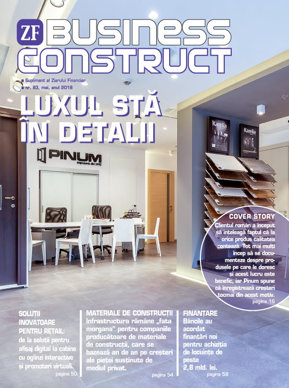 E-Paper: Business Construct